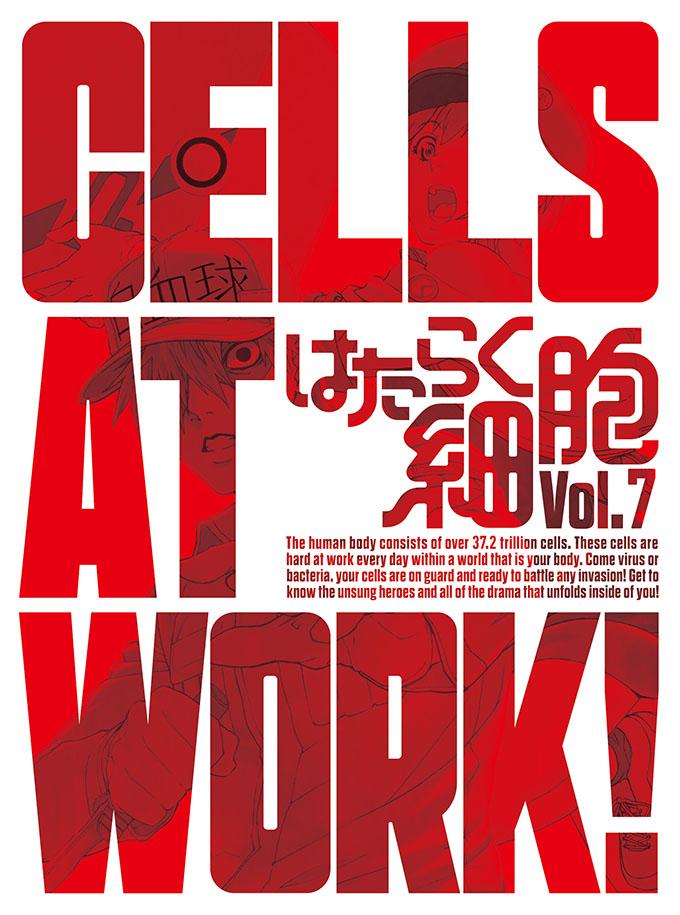 はたらく細胞 アニメイト
